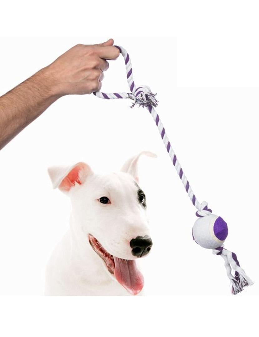Bota Bull Terrier Veneza Canela Feminina: .br