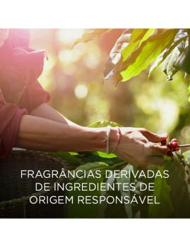 imagem de Airwick Botanica Aerosol Rosas&Gerânio Africano4