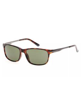 Óculos de Sol Gant Homem Tartaruga Verde