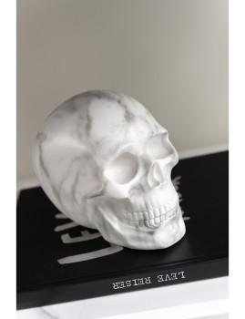 imagem de Crânio Grande decorativo de Mármore3