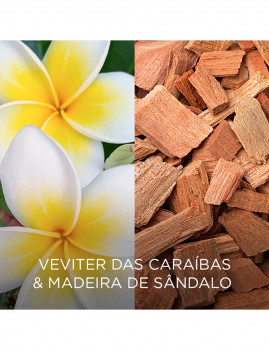 imagem de Airwick Botanica Sticks Perfumados Vetiver das Caraibas&Madeira Sândalo5