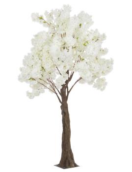 imagem de Planta Begonia Tree Branco H240 S1
