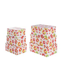 imagem de Set6  Caixas Primula Opacas1