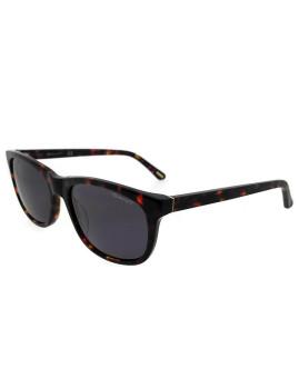 Óculos de Sol Gant Homem Havana