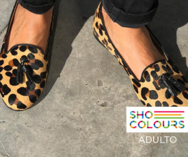 Shoe Colours Adulto Entregas em 72h