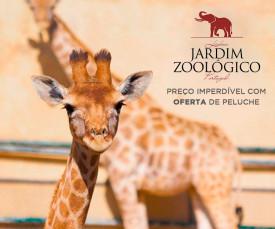 Imagem da campanha Jardim Zoológico de Lisboa