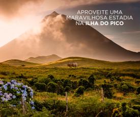 Aproveite uma maravilhosa estadia na Ilha do Pico!!