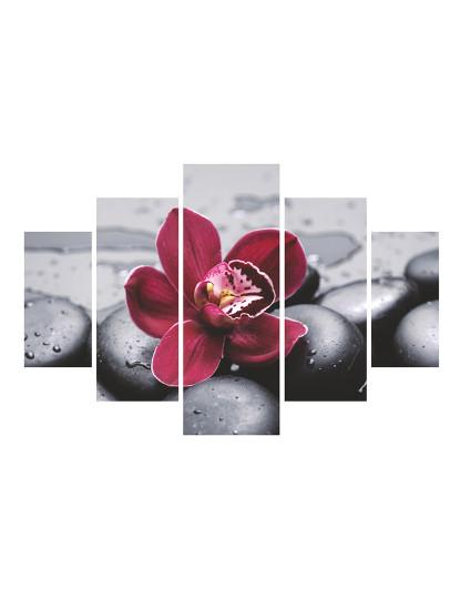 Pack 5 Pinturas MDF Flôr Lotus