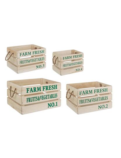 Set4 Caixas Fruit Verde
