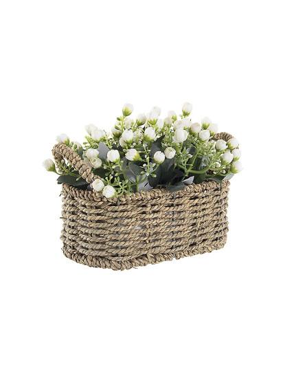 Cesta De Flores Kalanchoe Branco