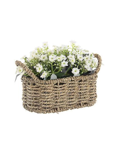 Cesta De Flores Petúnia Branca