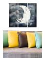 Pintura Decorativa em MDF (3 Peças) Multicolor